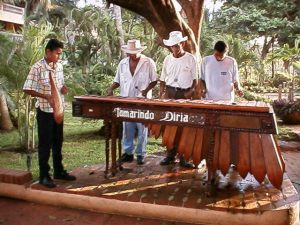 A traditional marimba with timber resonators